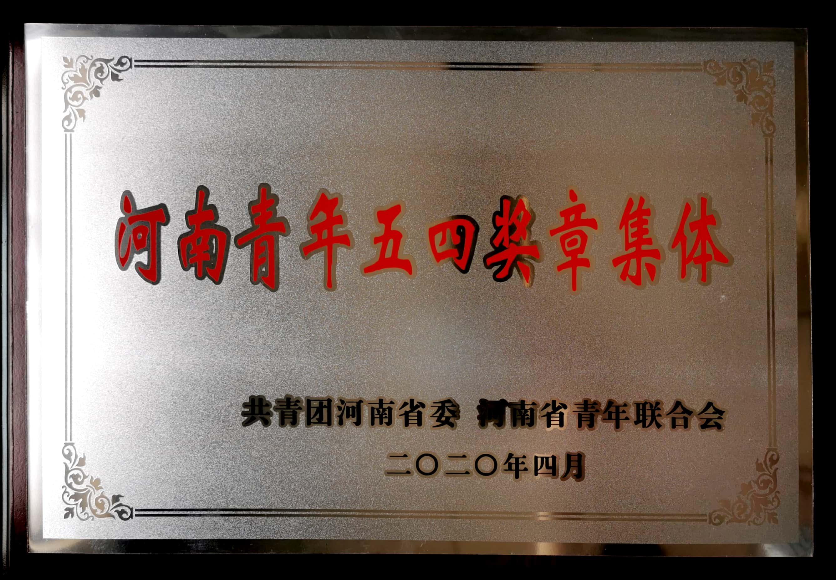 河南青年五四獎章集體