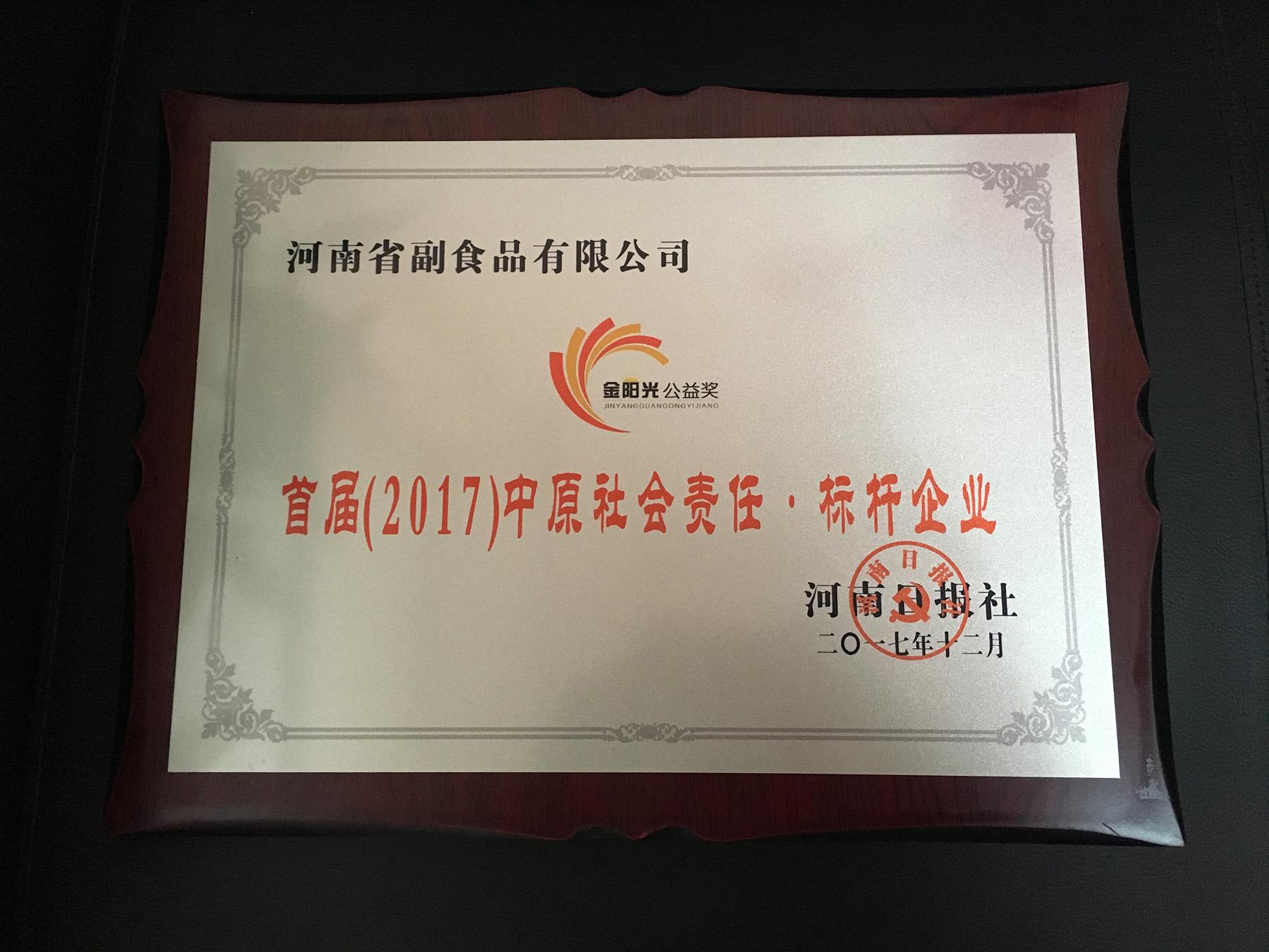 首屆(2017)中原社會責任·標桿企業